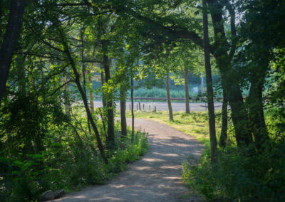 Shaded Trail at Hammonasset