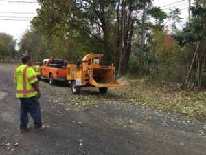 Branford's  Tabor Trail Construction Begins!